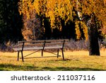 alone bench in the autumn park  ... | Shutterstock . vector #211037116