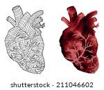 abstract human hearts  lines... | Shutterstock .eps vector #211046602