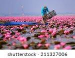 lake of pink lotus nong han ... | Shutterstock . vector #211327006