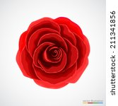 red rose on white background.... | Shutterstock .eps vector #211341856