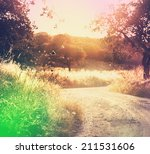 road in  meadows | Shutterstock . vector #211531606