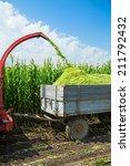 Постер, плакат: Harvester cutting field loading