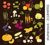assorted vegetable vector... | Shutterstock .eps vector #211848502