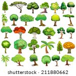illustration of different kind... | Shutterstock .eps vector #211880662
