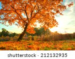 autumn scenery with dry leaves... | Shutterstock . vector #212132935