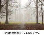 cold morning fog on foliage on meadow among the trees of  autumn creepy forest - stock photo