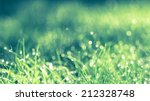 abstract natural background.... | Shutterstock . vector #212328748