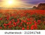 Nice Sunset Over Poppy Field