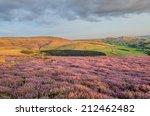 purple heather looking across...