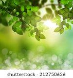 spring or summer season...   Shutterstock . vector #212750626