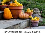 Decorative Gourds  Pumpkins An...