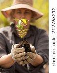 planting a seedling tree | Shutterstock . vector #212768212