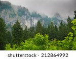 Mountain Among Beautiful Forest
