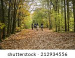 Stock photo group of horse riders in the forest in autumn 212934556