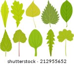 green leaves on white background | Shutterstock .eps vector #212955652