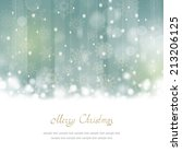christmas greeting card with... | Shutterstock . vector #213206125