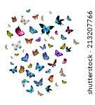 many different butterflies ... | Shutterstock . vector #213207766