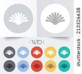 sea shell sign icon. conch... | Shutterstock . vector #213326638