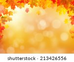 colored autumn leaves falling... | Shutterstock . vector #213426556