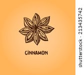 cinnamon. natural spices....   Shutterstock .eps vector #213435742
