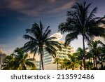palm trees and buildings in... | Shutterstock . vector #213592486