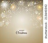 christmas glossy star... | Shutterstock .eps vector #213640342