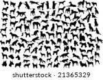 Stock vector  silhouettes of different breeds of dogs in action and static 21365329