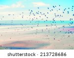 birds flying and abstract sky ... | Shutterstock . vector #213728686