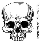 a drawing of a human skull in a ... | Shutterstock . vector #213742012