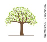 tree with green leaves isolated ... | Shutterstock .eps vector #213992086