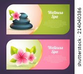 set of thematical spa cards... | Shutterstock .eps vector #214040386