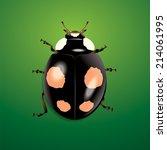 ladybug on green background | Shutterstock .eps vector #214061995