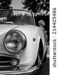 the splendor of the beautiful... | Shutterstock . vector #214405486