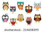 Stock vector set of owls 214658395
