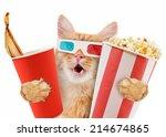 cat watching a movie | Shutterstock . vector #214674865