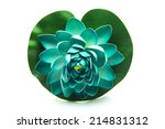 lotus flower model with leaf... | Shutterstock . vector #214831312