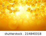 natural background with leaves... | Shutterstock .eps vector #214840318