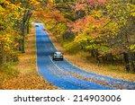 Asphalt Road With Autumn...