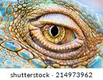 close up of the eye of a green... | Shutterstock . vector #214973962