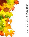 border frame of colorful autumn ... | Shutterstock . vector #215045236