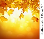 natural background with autumn... | Shutterstock . vector #215062792