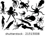 illustration with fifteen squid ... | Shutterstock .eps vector #21515008