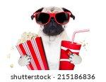 cinema movie tv watching pug... | Shutterstock . vector #215186836