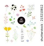 set of wild flowers   Shutterstock .eps vector #215210812
