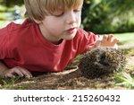 boy  4 6  wearing red sweater ... | Shutterstock . vector #215260432
