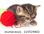 Stock photo curious little kitten with a yarn ball isolated on white background 215529802