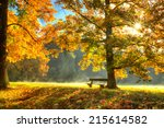 autumn scenery with trees and... | Shutterstock . vector #215614582