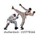 two karate men sensei and... | Shutterstock . vector #215778166