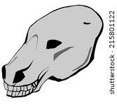 Vector Hand Drawn Horse Skull