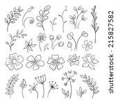 flowers doodle elements for... | Shutterstock .eps vector #215827582